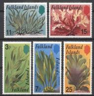 1979 Malvinas Flora Plantas Algas Marinas 5v.mint. - Plants