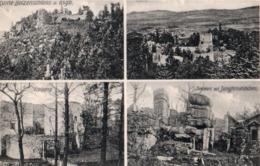 SCHLESIEN ( Allemagne ) - Ruine Bolzenschloss - Schlesien