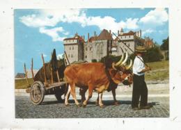 Cp, Agriculture,conducteur De Boeufs Et Palais Des Ducs ,Portugal ,  GUIMARAES , Vierge - Equipos