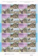 FEUILLE DE 10 BLOC FISCAUX - PERMIS DE CHASSE 2002 - 2003 - FEDERATION 36 INDRE - HUNTING LICENCE REVENUE - Fiscaux