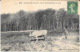 44 - LE GAVRE - 1175 - Sur La Lisière De La Forêt Du Gavre - Attelage - Agriculture - Circulé 1913 - - Le Gavre