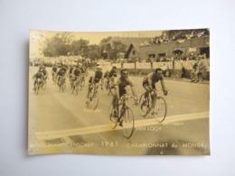 Photo Original Wereldkampioenschap Championnat Du Monde 1961 Van Looy Poulidor - Ciclismo
