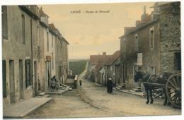LIGNE - Route De Mouzeil - Ligné