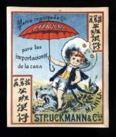 Etiquette Publicitaire De PARAPLUES STRUCKMANN & CIA (10 X 11,5 Cms). Paraplue (Ref. 117160) - Unclassified