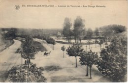 Bruxelles Woluwe Avenue De Tervueren Les étangs Mellaerts - Woluwe-St-Pierre - St-Pieters-Woluwe