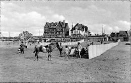 De Haan - Coq S Mer - Plage Et Digue - Strand Zeedijk (animation, Cheval) - De Haan