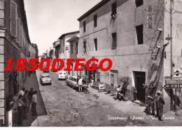 TORRENIERI - VIA CASSIA  F/GRANDE VIAGGIATA ANIMAZIONE CON INSEGNE TABACCHI - Siena