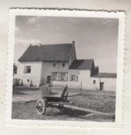 Grimbergen - Huis - Te Situeren - Foto 6 X 6 Cm - Orte