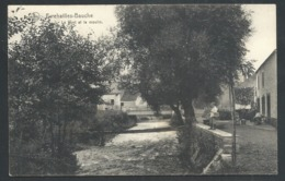 1.1 // CPA - EVREHAILLES BAUCHE - Yvoir - Le Pont Et Le Moulin - Nels  // - Yvoir