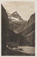 (CH1311) UELIALP MIT TODI ... UNUSED - Switzerland