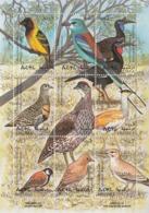 1998 Eritrea Birds Oiseaux Miniature Sheet Of 9 MNH - Eritrea