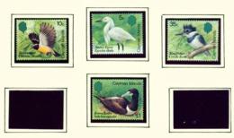 CAYMAN ISLANDS - 1984 Birds Set Unmounted/Never Hinged Mint - Cayman Islands
