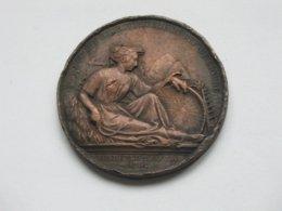 Médaille Société D'agriculture Du Dep De L'Indre - Concours Du Blanc 1864 **** EN ACHAT IMMEDIAT **** - Professionnels / De Société