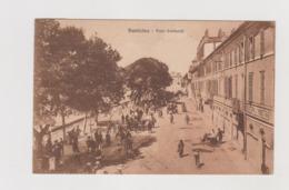 Fiumicino (RM), Viale Garibaldi  - F.p. - Anni '1920 - Fiumicino
