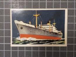 Cx 10 -3718) Cromo Portugal P/ Caderneta NAVIOS E NAVEGADORES #38 Marinha Mercante CHEFF M. MIJOTTE Ship Bateau - Trade Cards