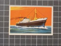 Cx 10 -3738) Cromo Portugal P/ Caderneta NAVIOS E NAVEGADORES #36 TRIGLAY Ship Bateau - Trade Cards