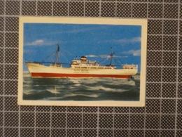 Cx10 -3743) Cromo Portugal P/ Caderneta NAVIOS E NAVEGADORES #76 RITA MARIA Ship Bateau - Trade Cards