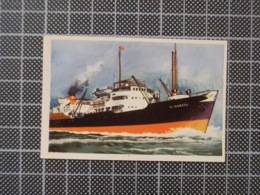 Cx10 -3777) Cromo Portugal P/ Caderneta NAVIOS E NAVEGADORES #171 EL NABEEL Ship Bateau - Trade Cards