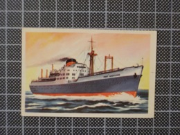 Cx10 -3798) Cromo Portugal P/ Caderneta NAVIOS E NAVEGADORES #79 PORT AUCKLAND Ship Bateau - Trade Cards