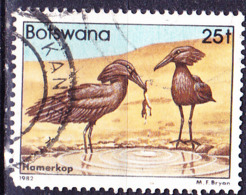 Botswana - Hammerkopf (Scopus Umbretta) (MiNr 310) 1982 - Gest Used Obl - Botswana (1966-...)