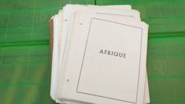 Lot N° TH. 1062  COLONIES FRANCAISE Debut De Collection Sur Page D'albums Neufs * Ou Obl. - Sammlungen (im Alben)