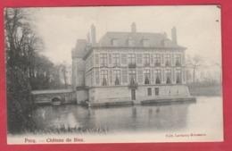 Pecq - Château Du Biez - 1906 ( Voir Verso ) - Pecq