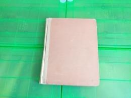 Lot N° TH.1057 VRAC DU MONDE Sur Page D'albums - Sammlungen (im Alben)
