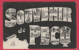Pecq - Souvenir De ... - Vues De Pecq Dans Les Lettres -1905 ( Voir Verso) - Pecq