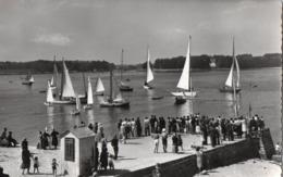 [29] Finistère > Loctudy La Cale Depart Des Regates - Loctudy