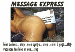 PIN UP MESSAGE EXPRESS  RV - Pin-Ups