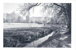 Woluwe-Saint-Pierre La Woluwe - Woluwe-St-Pierre - St-Pieters-Woluwe
