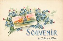 CELLES SUR PLAINE - SOUVENIR DE CELLES SUR PLAINE - France