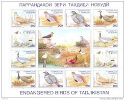 1996. Tajikistan, Birds,sheetlet, Mint/** - Tadzjikistan