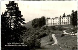 31pg 88 HOTEL WINTERBACH A.d. MARIAZELLBAHN - Mariazell