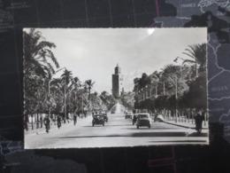 Marrakech Avenue Mohammed 5 - Marrakech