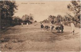 MAROC - ALCAZAR - CAMINO  DEL RIO LUKUS - Hommes - Ânes - Carte Sépia - Autres