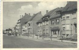 LA PANNE / DE PANNE : Avenue Prince Albert / Prins Albertlaan - RARE VARIANTE - Cachet De La Poste 1956 - De Panne