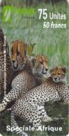 Carte Prépayée -  INTEROUTE - SPECIALE AFRIQUE -  75 UNITES - Andere Voorafbetaalde Kaarten