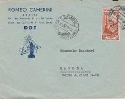 515 - STORIA POSTALE - BUSTA PUBBLICITARIA - ROMEO CAMERINI- DDT - 1952 - AMG-FTT - TRIESTE PER SAVONA - 1946-.. Republiek