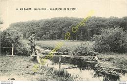 44.  LE GAVRE .  Les Abords De La Forêt . - France