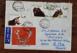 ROUMANIE, Canidés, LOUP, Ours Lynx, Yvert N°2982+2983 Sur Lettre Ayant Circulé En 1976 Pour Le PECQ En France - Sellos