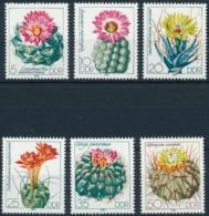 DDR - Kakten Kaktus - Einwandfrei Postfische/** Serie - Plants