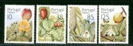 PORTOGALLO - FRUTTA  -  FICO D'INDIA - GOIABA - Frutta