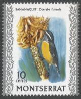 Montserrat. 1970 Birds. 10c MNH. SG 247 - Montserrat