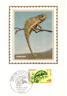 Thème Animaux - Caméléon - France Carte Maximum - Reptiles & Batraciens