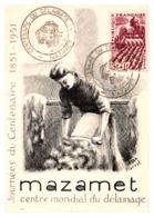 Thème Animaux - Mouton - France Carte Maximum - Farm