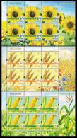 2019Moldova 1113KL-15KLFlora. Field Crops - Plants
