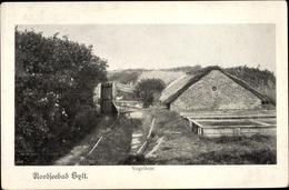 Cp Insel Sylt In Nordfriesland, Vogelkoje - Duitsland
