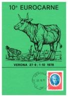 Thème Animaux - Vache, Poule - Italie Carte - Farm