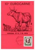 Thème Animaux - Vache, Poule - Italie Carte - Ferme
